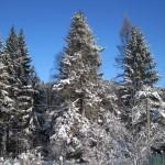 zima2012Gallery036