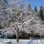 zima2012Gallery037