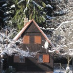 zima2012Gallery060